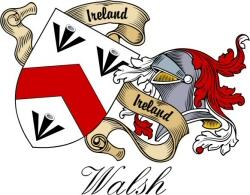 Swartz family coat of arms mug zazzle